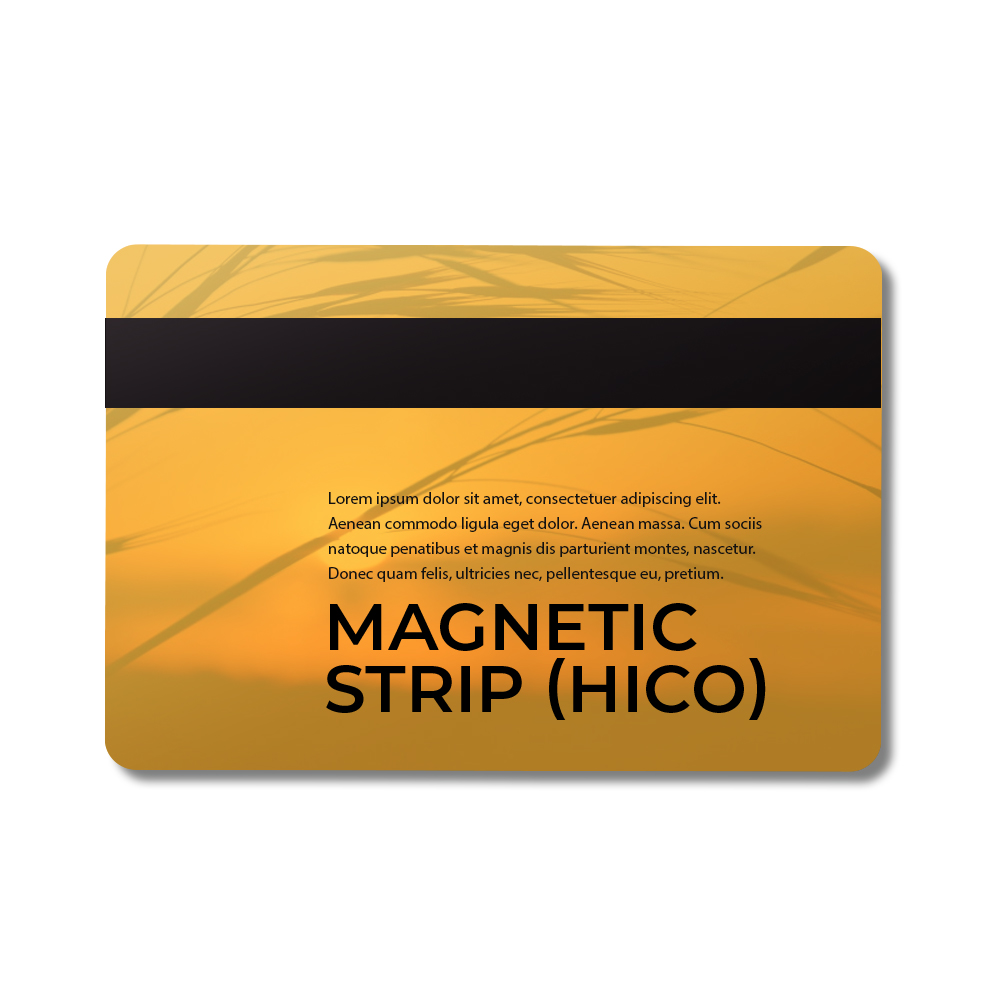 Magnetic Strip  MC